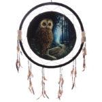 Decorative Fantasy Owl Dreamcatcher Large