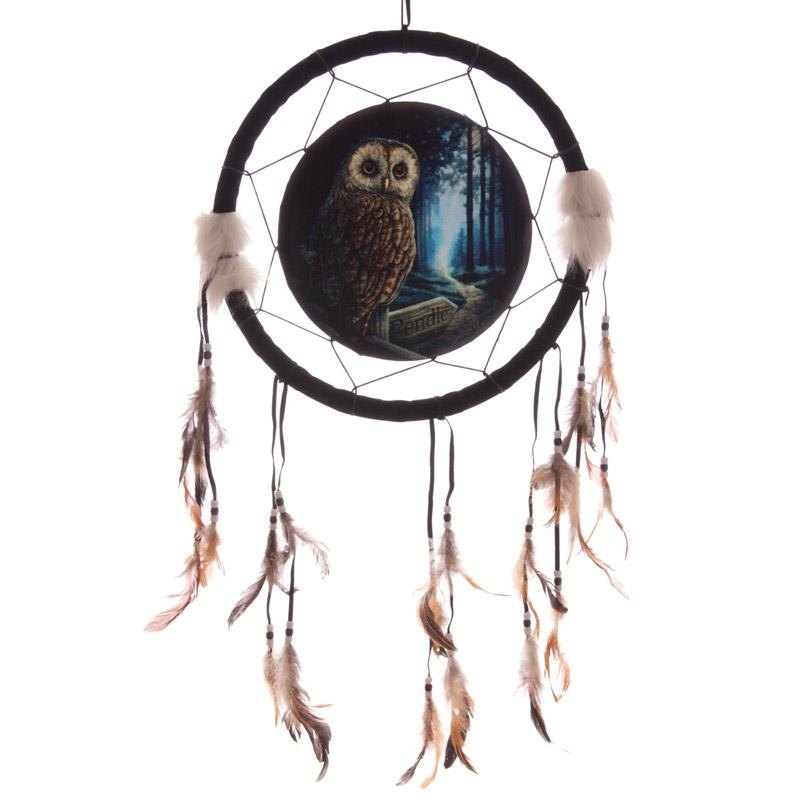 Decorative Fantasy Owl Dreamcatcher Medium