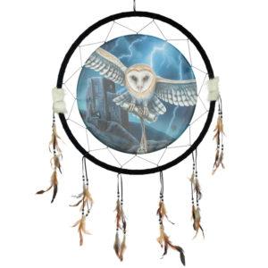Decorative Heart of the Storm Owl Design Dreamcatcher Large