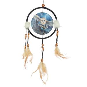 Decorative Heart of the Storm Owl Design Dreamcatcher Small