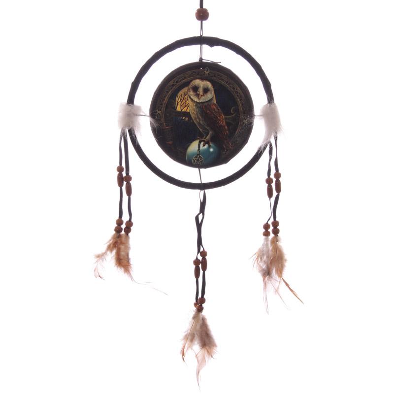 Decorative Magical Barn Owl 16cm Dreamcatcher