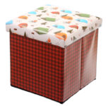 Foldable Padded Stool  and  Storage Box - Camping Design