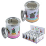 Fragranced Soya Candle Tin - Cactus