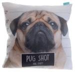 Fun Design Cushion with Insert - Pug Shot