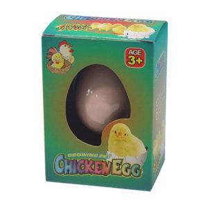 Fun Kids Novelty Hatching Chicken