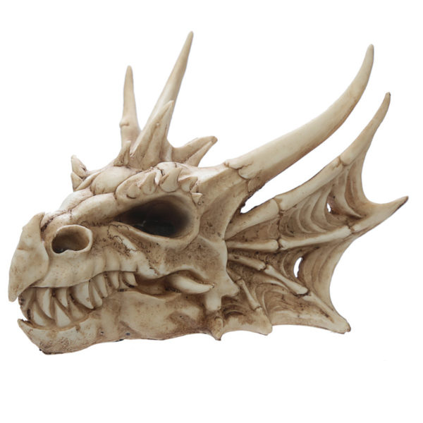 Collectable Dragon Skull