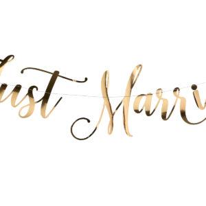 Gold Just Married BuntingGold Just Married Bunting