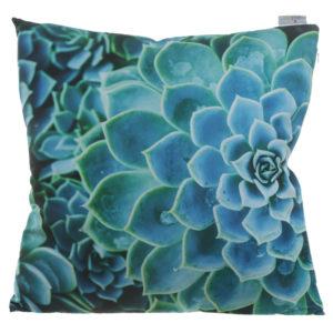 Cushion with Insert - Cactus Succulent Design