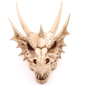 Decorative Fantasy Dragon Skull