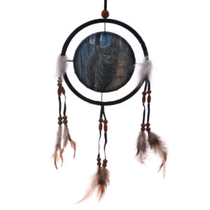 Decorative Magical Cat and Broomstick 16cm Dreamcatcher