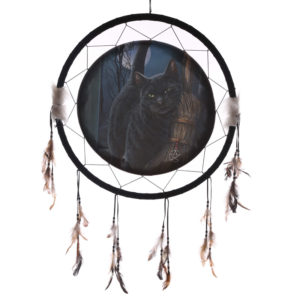 Decorative Magical Cat and Broomstick 60cm Dreamcatcher