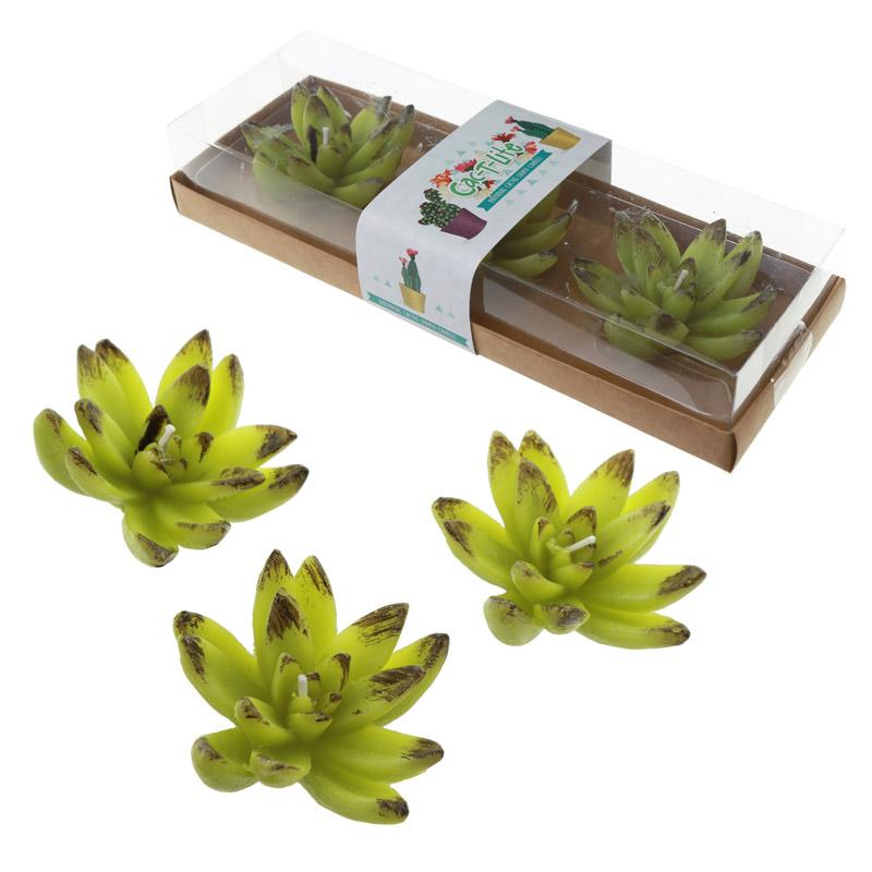 Fun Decorative Cactus Candles – Floating Set of 3