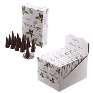 White Sage Stamford Incense Cones