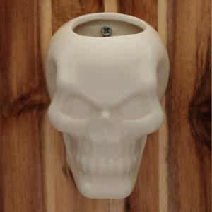 Decorative Ceramic Indoor Wall Planter - Skull